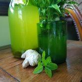 Basil, Ginger, Lime Iced Tea Recipe
