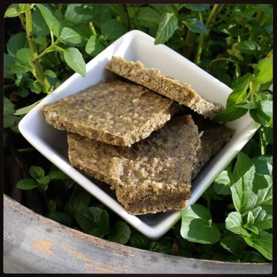 Hint o' Mint Protein Crunch Squares