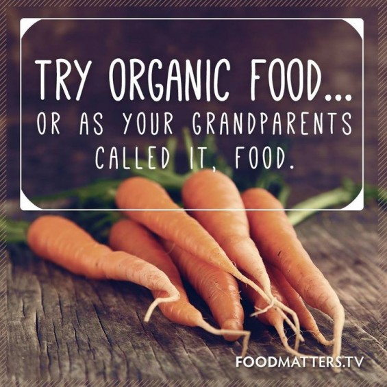 """Organic food - or as your grandparents called it """"food"""""""